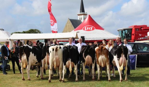 Koeienkeuring op de Landbouwdag.