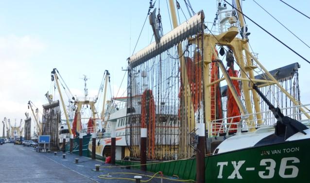Beeld van de vissershaven op vrijdagmorgen.