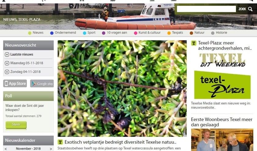Uitsnede uit de website Texel-Plaza.