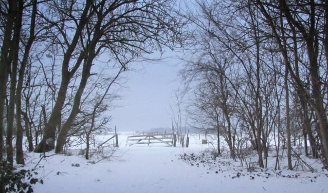 Verhalenvertelster Marjan Boontjes neemt haar gehoor mee naar echte winters met sneeuw.