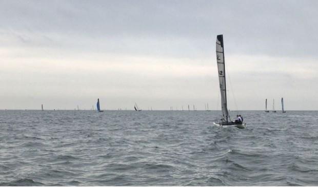 De catamarans op het water.