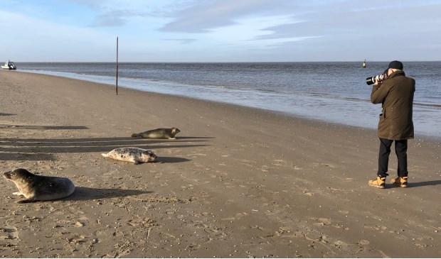 Pieter van Vollenhoven fotografeert zeehonden.