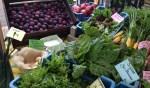 Oogstmarkt met Texelse producten