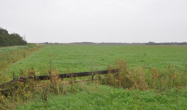 De grond langs de Nieuwlanderweg en het Waalenburgerdijkje.