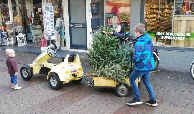 Deze week waren diverse kinderen al druk bezig met het inzamelen van kerstbomen.