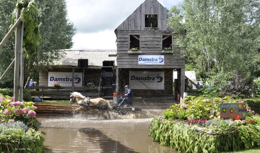 Van de Paardenmarathon wordt in Driezum/Wâlterswâld altijd een groot spektakel gemaakt.