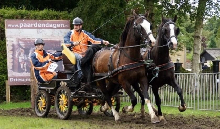 De paardenmarathon trekt ieder jaar deelnemers uit binnen- en buitenland.