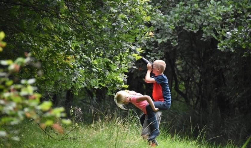 Kom foto's maken in Nationaal Park De Alde Feanen.