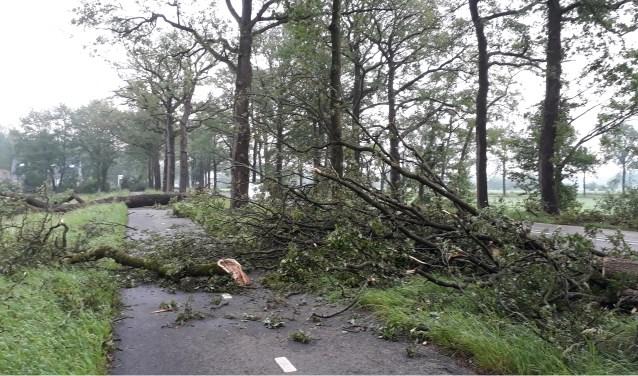 Het fietspad langs de Eerbeekse weg tussen Brummen en Eerbeek lag bedolven onder omgewaaide bomen. Foto: Marion Verhaaf
