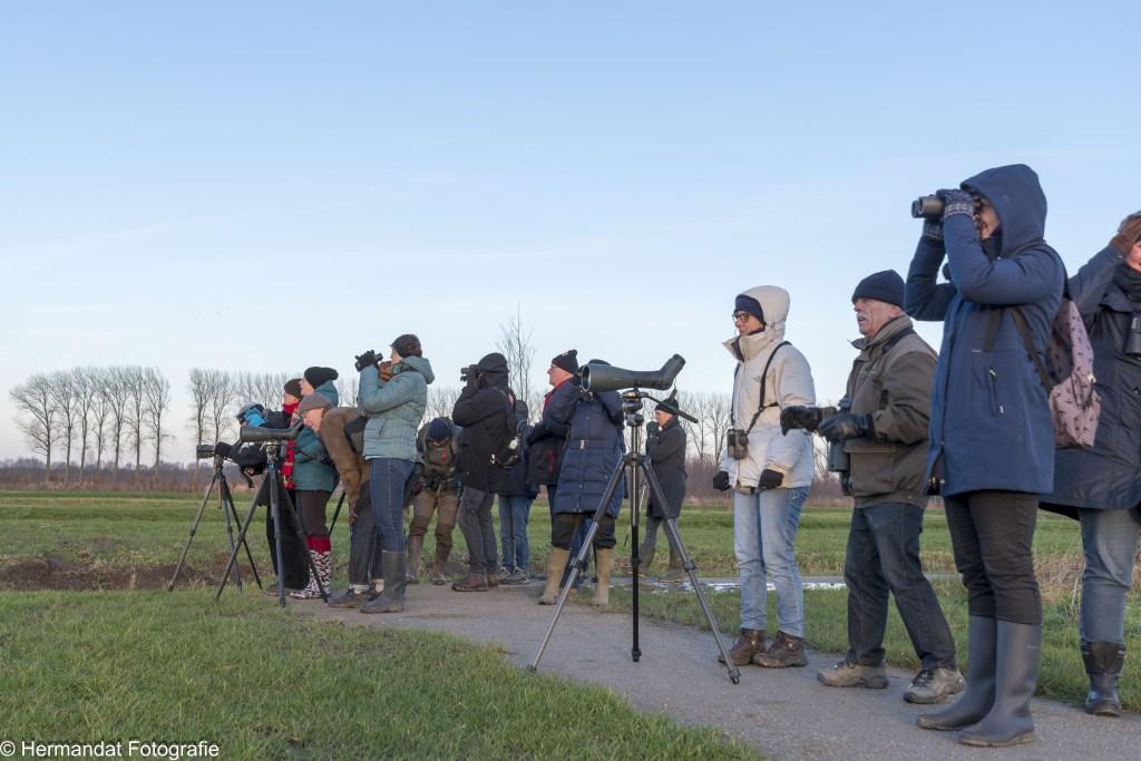 Vogelspotters Foto: Herman Hendriks © Hét Gemeentenieuws