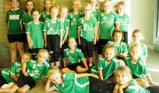 Deelnemende jeugdteams van handbalvereniging Groesbeeks Glorie. (foto: Susan Mulders)