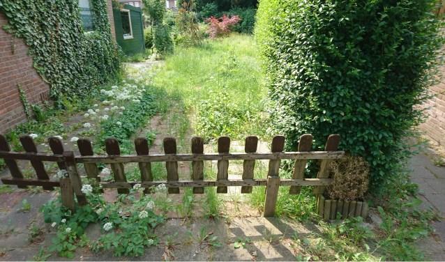 tuin ligt er haveloos bij omdat bewoner al een jaar afwezig is