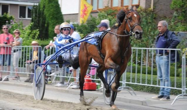 Het paard Gently Boko. Hier wordt er gereden door Danny Brouwer. (foto: Jan Willemsen )