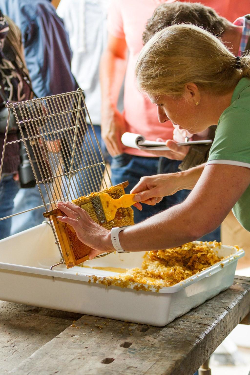 Raten klaarmaken voor het honing slingeren