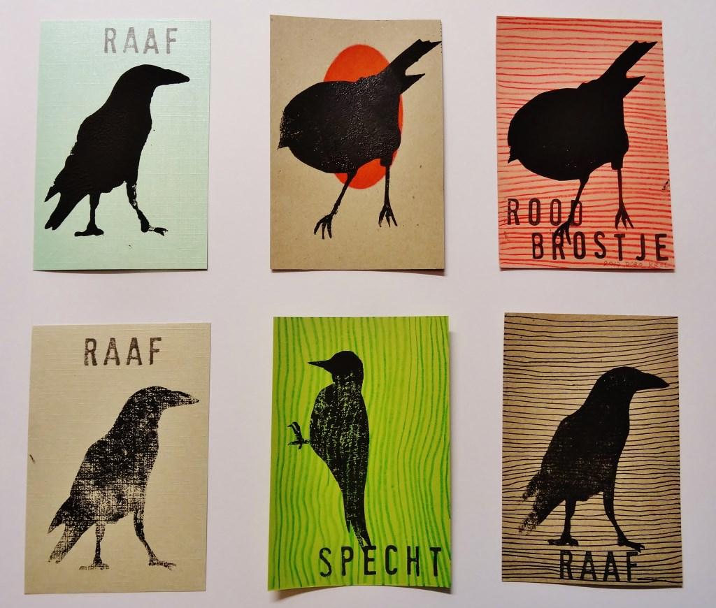 Vogeltjes. (foto: Doro Krol)