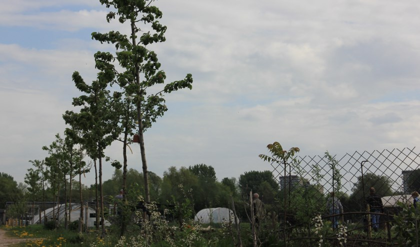 Biodiversiteit op SLB Mooieweg